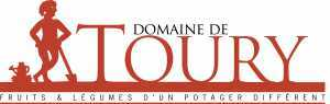 Logo-Toury-copie-300x95